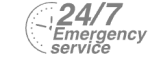 24/7 Emergency Service Pest Control in Dartford, Crayford, DA1. Call Now! 020 8166 9746